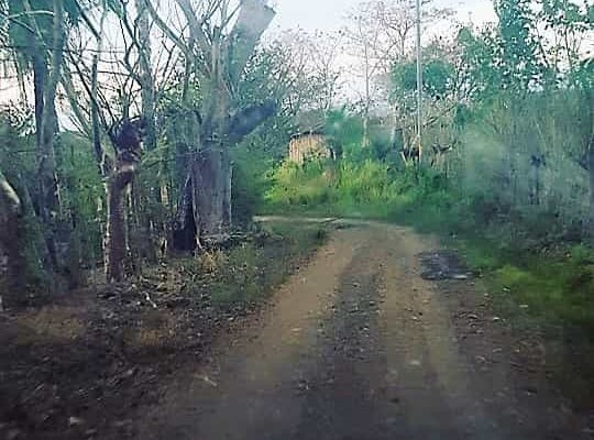 campervan Costa Rica